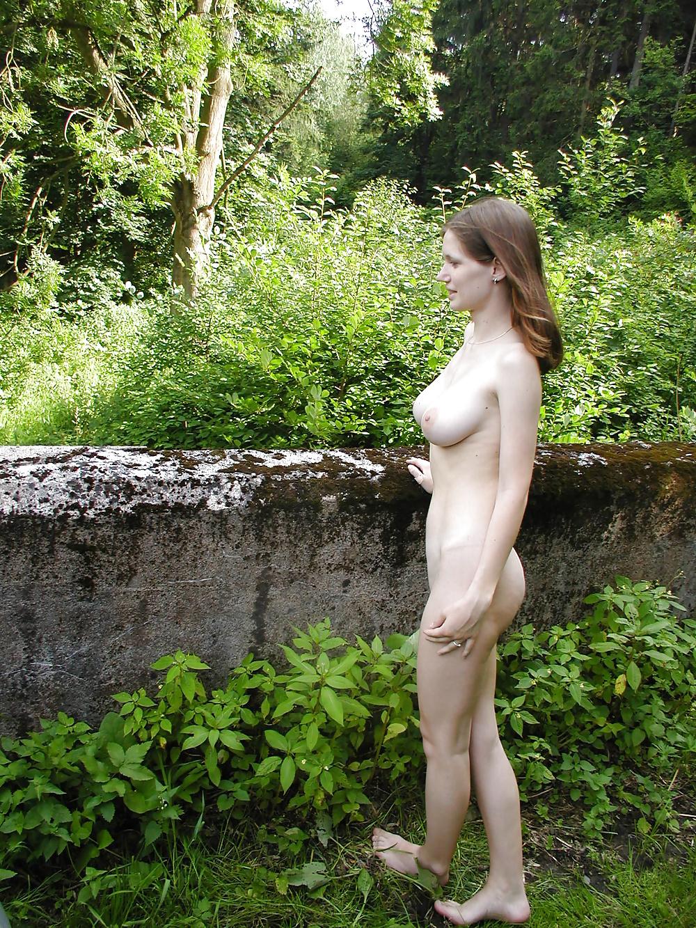 Egzotische Hündinen in Freie Bildern